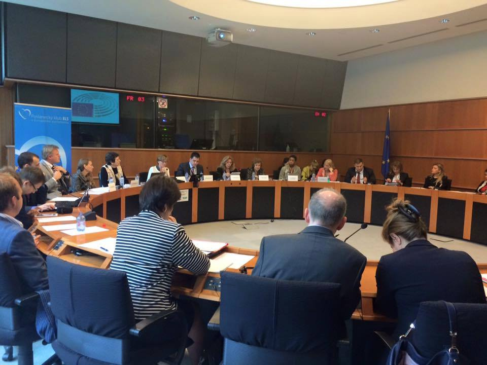 European Parliament Round Table 2015-06-02